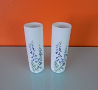 Shi Shi wit porseleinen vaasje s met blauwe lupinen erop