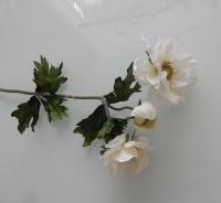 witte zijden bos anemoon