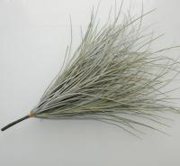 Grijze grassen, erg goede kunstplant en super hip