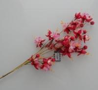 Fuchsia bloemen, lange steel