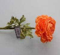 ranonkel oranje