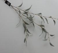 tak eucalyptus, kunst