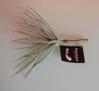 grijs groene kunstplant, yucca soortje
