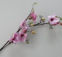 roze magnolia, hele lange takken