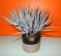 zwarte/grijs kort gras